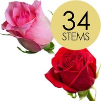34 Classic Red and Pink Roses