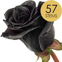 57 Classic Black Roses