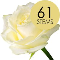 61 Classic White Roses