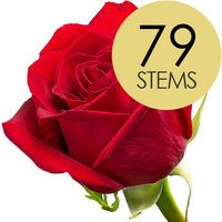 79 Classic Bright Red Freedom Roses