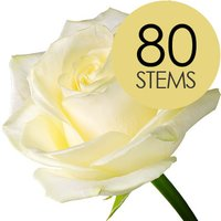 80 Classic White Roses