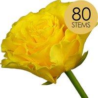 80 Classic Yellow Roses