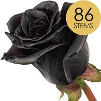 86 Classic Black Roses
