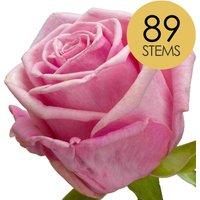 89 Luxury Pink Roses