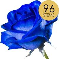 96 Classic Blue Roses