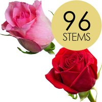 96 Classic Red and Pink Roses
