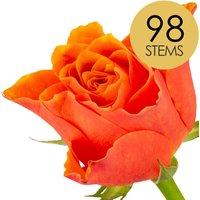 98 Luxury Orange Roses