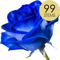 99 Classic Blue Roses