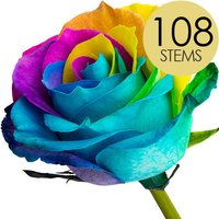 108 Luxury Happy Roses