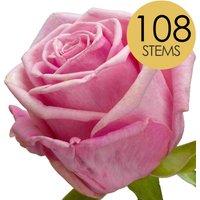 108 Luxury Pink Roses