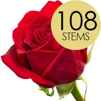 108 Luxury Bright Red Freedom Roses