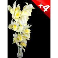 4 Classic White Cymbidium Orchids