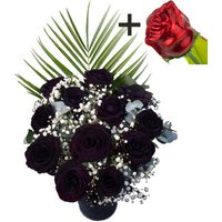 A single CHOCOLATE Rose surrounded by 11 Black Roses