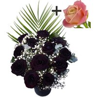 A single Peach Rose surrounded by 11 Black Roses