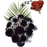 A single 12Inch Gold Trimmed Red Rose surrounded by 11 Black Roses