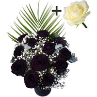 A single White Rose surrounded by 11 Black Roses