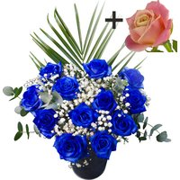 A single Peach Rose surrounded by 11 Blue Roses