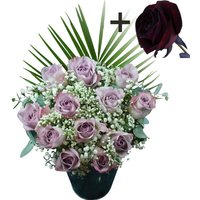 A single Black Rose surrounded by 11 Lilac Roses