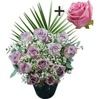 A single Pink Rose surrounded by 11 Lilac Roses