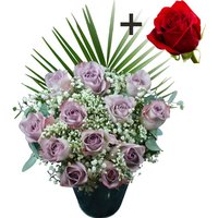 A single Bright Red Freedom Rose surrounded by 11 Lilac Roses