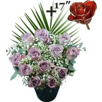 A single 17Inch Gold Trimmed Red Rose surrounded by 11 Lilac Roses