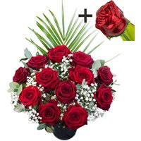 A single CHOCOLATE Rose surrounded by 11 Deep Red Naomi Roses