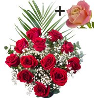 A single Peach Rose surrounded by 11 Bright Red Freedom Roses