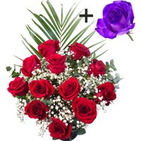 A single Purple Rose surrounded by 11 Bright Red Freedom Roses