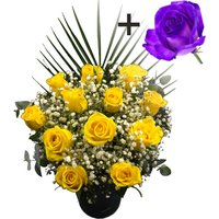 A single Purple Rose surrounded by 11 Yellow Roses