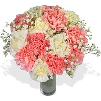 Carnation Carnival Bouquet