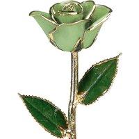 A Light Green 12Inch 24kt Gold Trimmed Rose