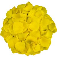 1 Jug of Yellow Rose Petals