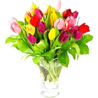 Totally Tulips Bouquet