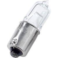 ShinYo Glühbirnen Halogen kurz 10er Pack 12V, H21W Bajonett