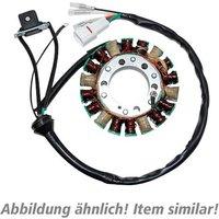P&W Lichtmaschinenstator wie OEM ESG957 für CBR 1000 RR SC57