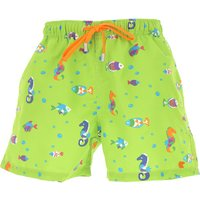 Gallo Swimwear On Sale in Outlet, Green, polyester, 2021, 2 ( 3-4 Years) 5 (9-10 Years)