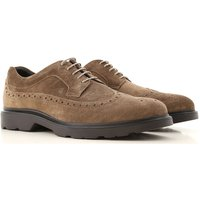 Hogan Brogue Shoes On Sale, Light Mud, Suede leather, 2019, 6 7 9