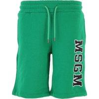 MSGM Kids Shorts for Boys On Sale, Green, Cotton, 2019, 10Y 12Y 4Y 8Y