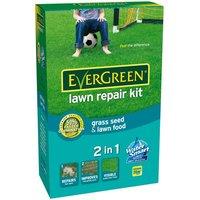 Evergreen Lawn Repair Kit - 1kg