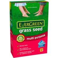 Evergreen Grass Seed Multi-Purpose 420g