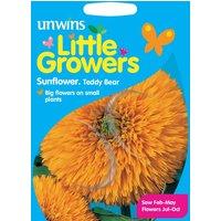 Unwins Little Growers Sunflower Teddy Bear Seeds