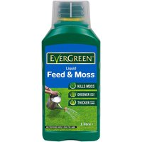 Evergreen Lawn Feeder and Moss Killer