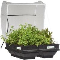 Vegepod Medium Raised Garden Bed with Cover