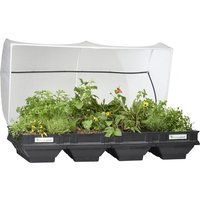 Vegepod Large Raised Garden Bed with Cover