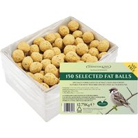 Johnston & Jeff 150 Selected Fat Balls