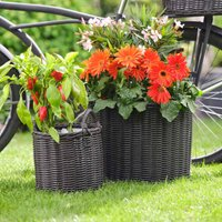 Ivyline Polyrattan Set of Two Lined Willow Planters