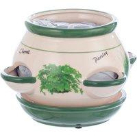 Taylors Kitchen Herb Pot