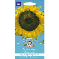 Mr Fothergills Sunflower Giant Single Seeds