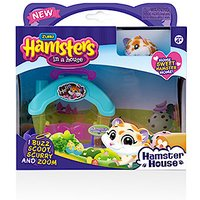 Hamsters in a House - Hamster House