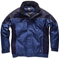 Dickies Mens Industry 300 Winter Jacket Royal Blue / Navy M